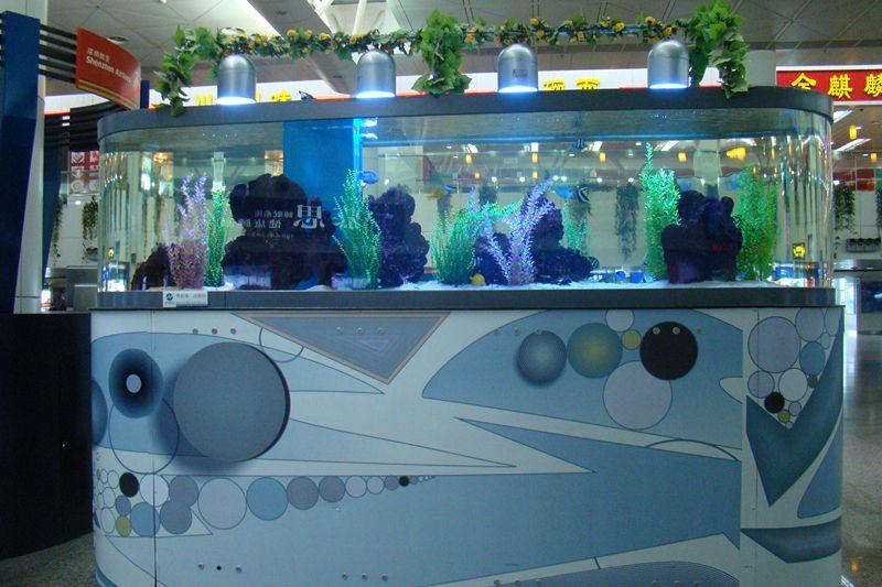 跑道型鱼缸