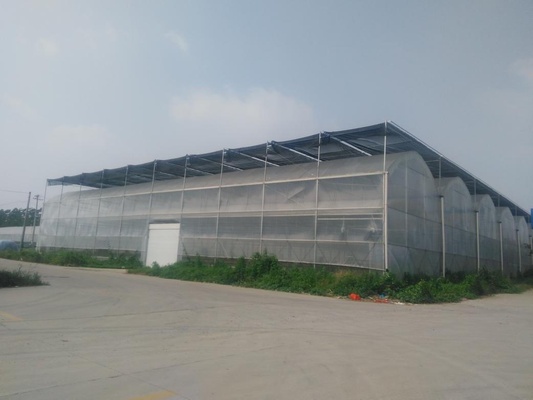 农业种植大棚   养殖大棚建设厂家  专业承接温室工程