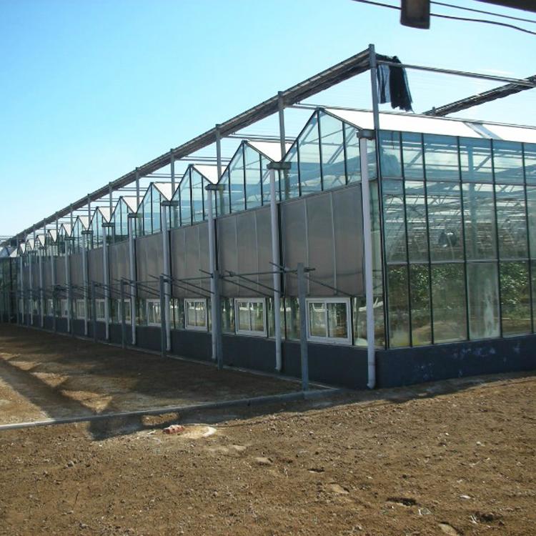 玻璃温室批发  玻璃温室大棚造价