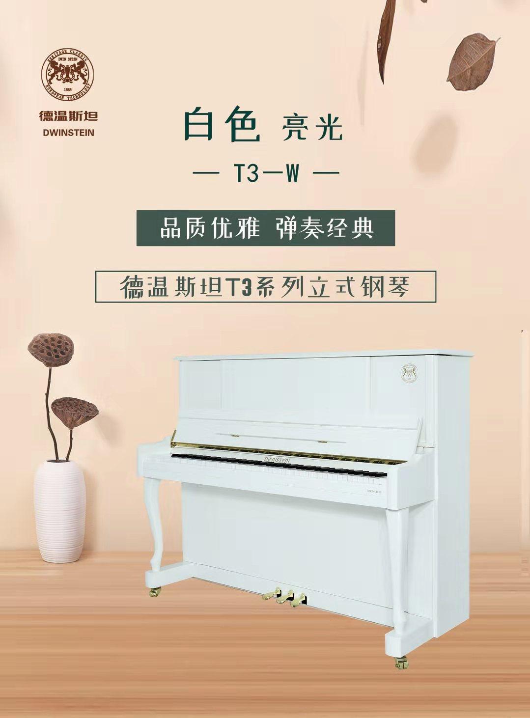 钢琴T2 B