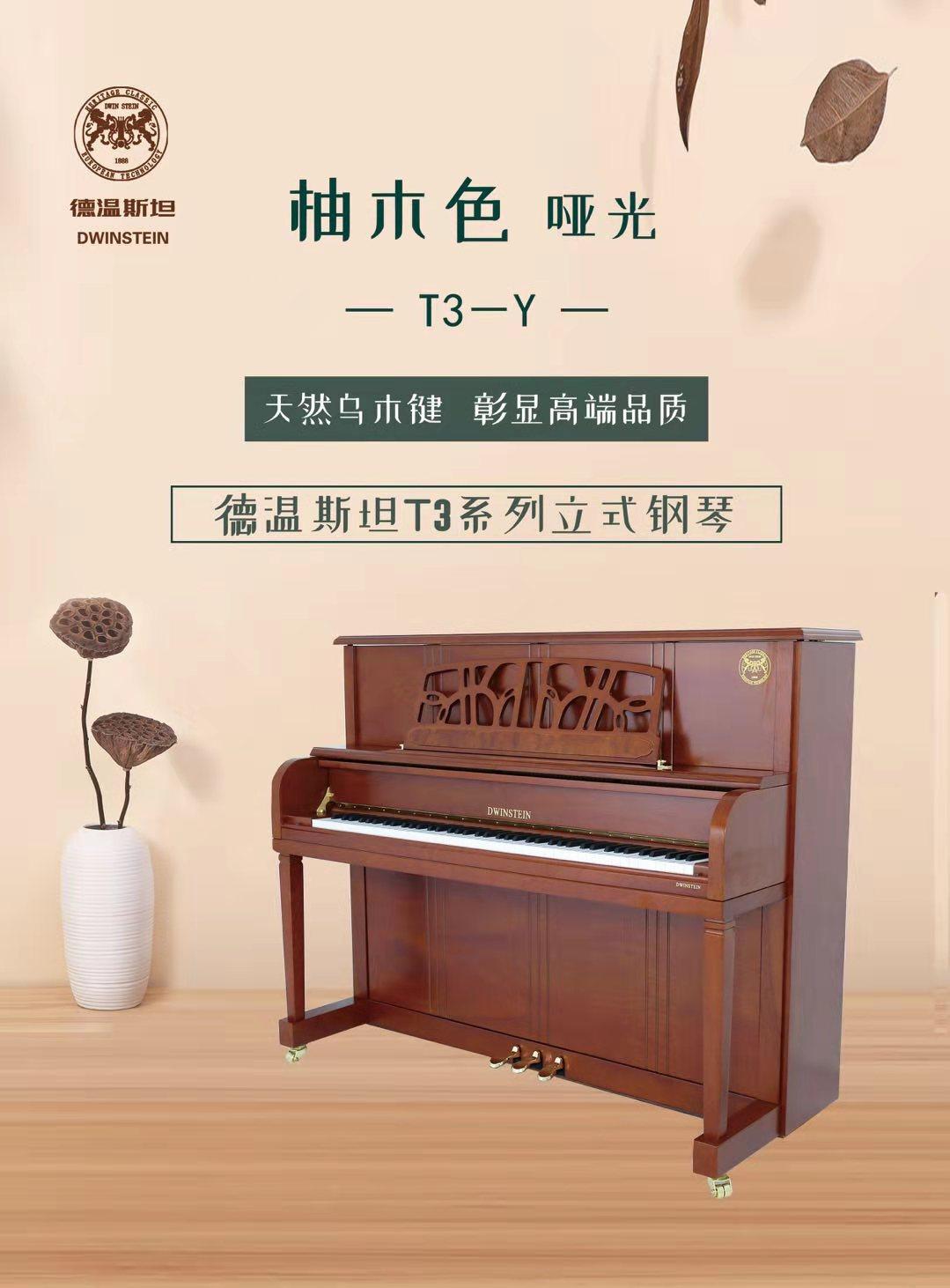 钢琴T3 B