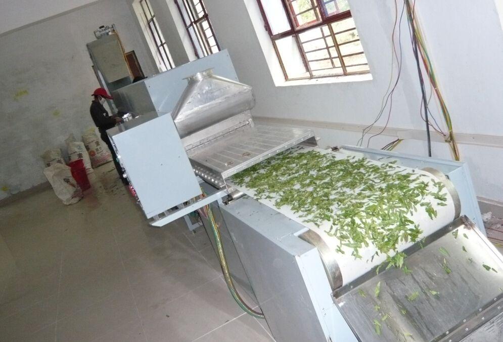 微波杀青干燥机 微波烘干机 茶叶微波杀青机 微波干燥机  南京微波烘干机