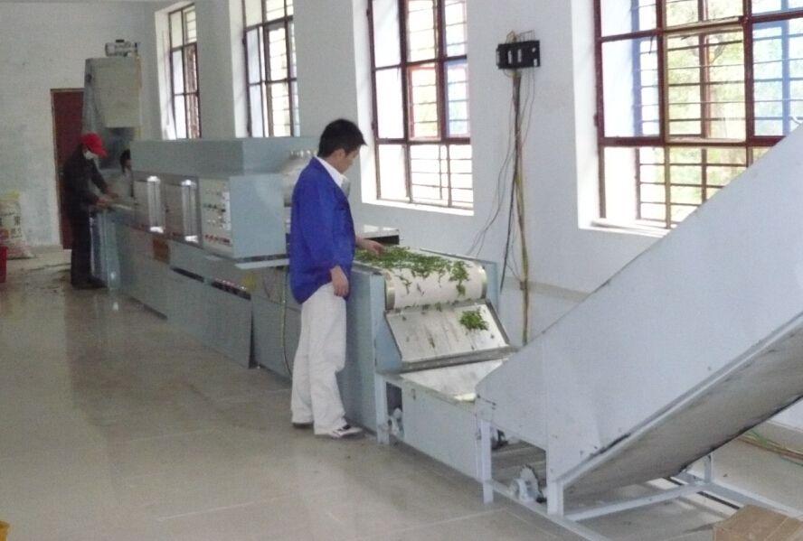 南京微波烘干机 茶叶微波杀青机 微波烘干机