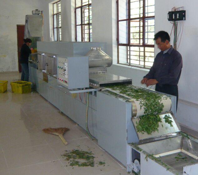 茶叶微波杀青机 微波干燥机 微波杀青干燥机 茶叶干燥机