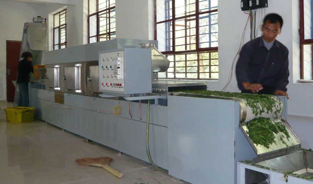 茶叶微波杀青机 微波干燥机  南京微波烘干机