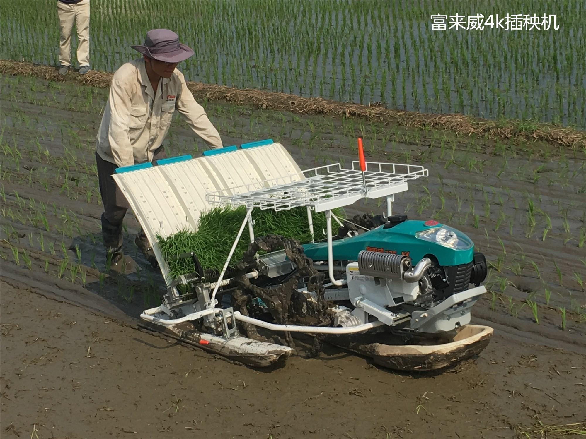 手扶式插秧机 厂家畅销 快速插秧 秧苗整齐