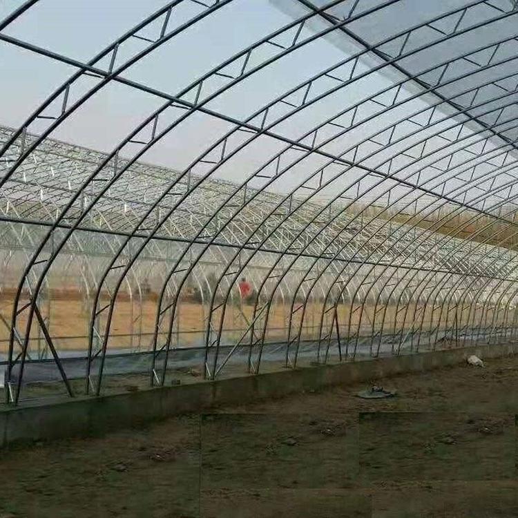 连栋大棚 温室薄膜大棚 种植大棚 蔬菜种植大棚建设 简易葡萄避雨大棚