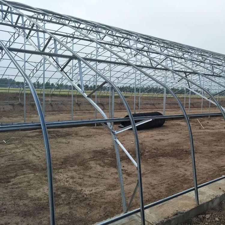 葡萄避雨大棚厂家 南京葡萄避雨大棚建设厂家 益邦温室大棚承建