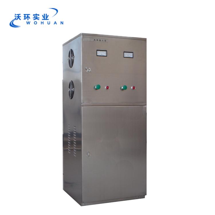 外置式臭氧发生器 臭氧发生器