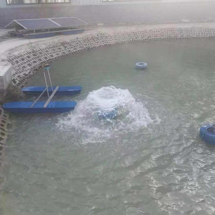 蓝污厂家定制河道景观喷泉曝气机 涌泉式曝气机
