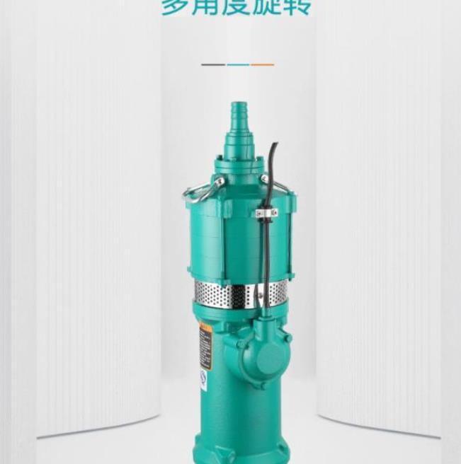 干式抽水泵Q10-40/3-2.2J 农田灌溉农用家用潜水泵 井用取水高扬程QD水泵多级清水泵